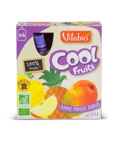 Coolfruit's Bio Pomme Mangue Ananas - 4 x 90 g