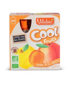 Coolfruit's Pomme Pêche Abricot Bio - 4 x 90 g