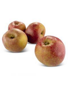 Pommes Boscoop