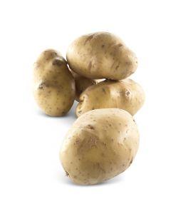 Aardappelen Bintje