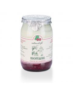 Biologische Yoghurt met Frambozen - 150 g
