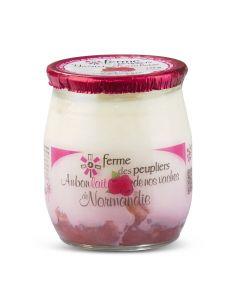 Frambozenyoghurt - 125 g