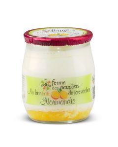 Mandarijnenyoghurt - 125 g