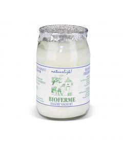 Biologische Magere Natuur Yoghurt - 150 g