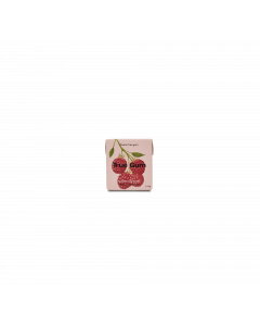 Chewing-Gum Framboise & Vanille - 21 g