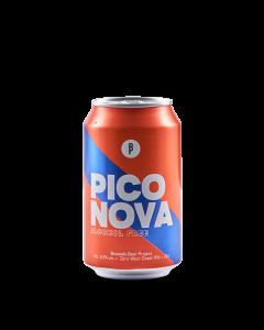 Bier Pico Nova - 33 cl