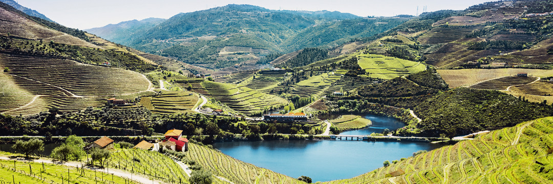 Les terroirs de nos vacances : initiation aux vins du Portugal