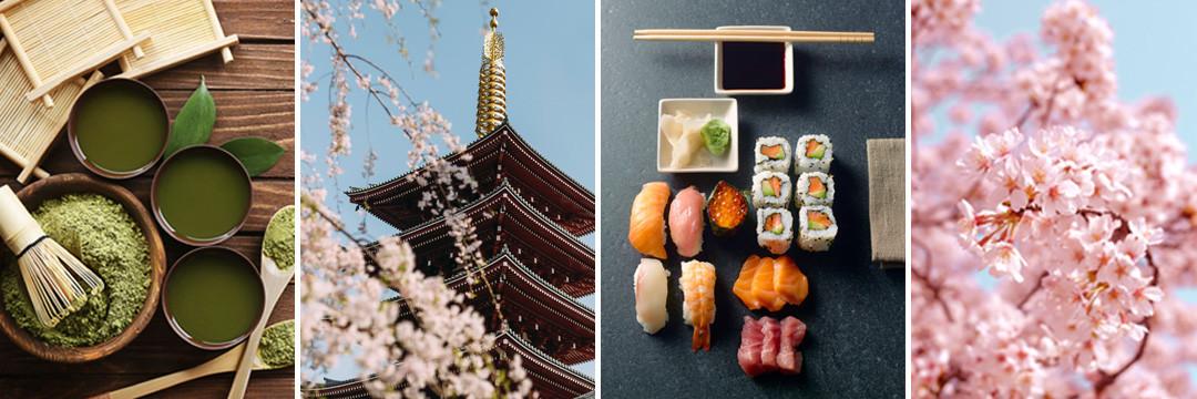 Dégustation exceptionnelle de produits japonais - 4 mai