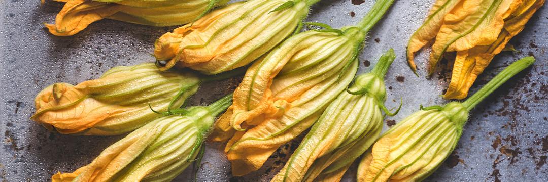 Courgettebloemen gevuld met langoustine