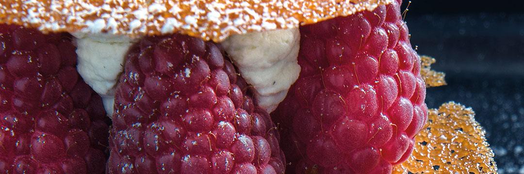 Rood fruit en krokante tuile