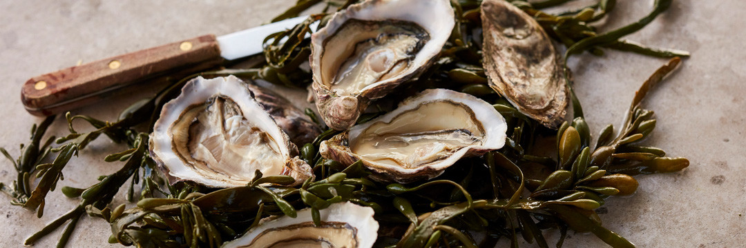 Oesters met champagne