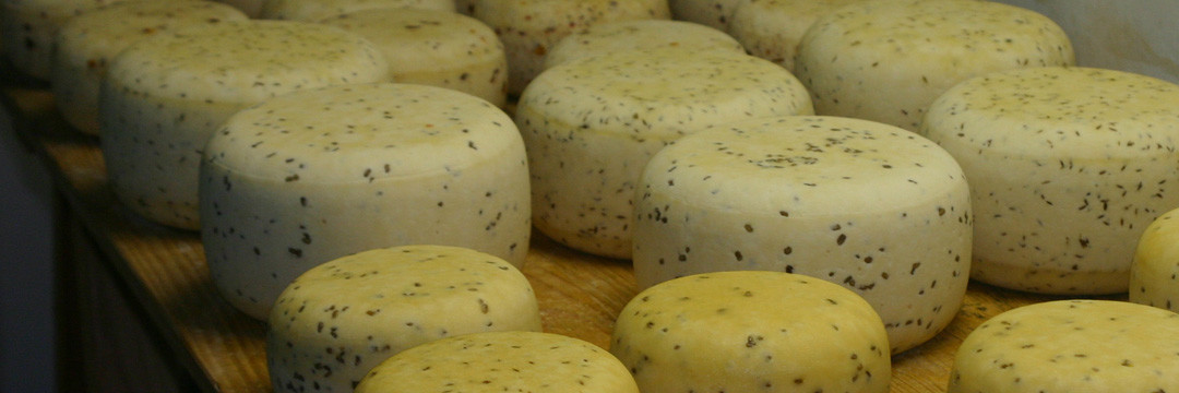 Les fromages de Thoricourt