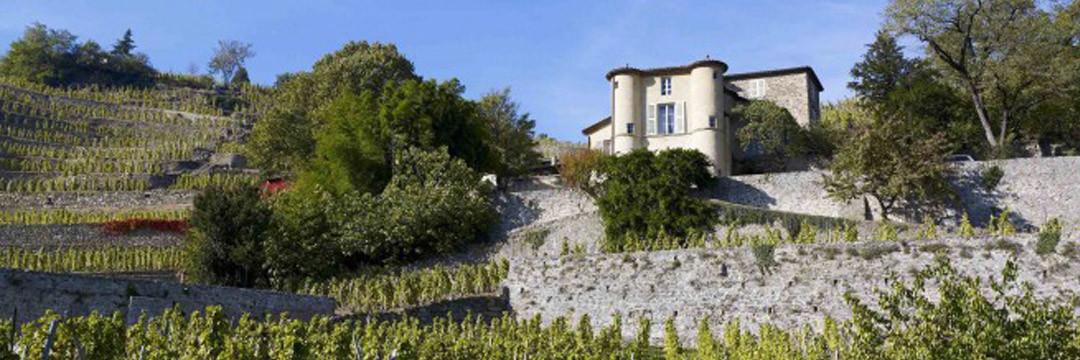 Les vins du Rhône septentrional du côté de Vienne